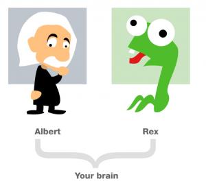 cerebro - procrastinar